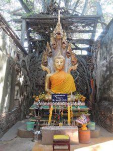 พระพุทธรูปปางนาคปรก–พระพุทธรูปประจำวันเสาร์