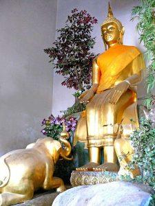 พระพุทธรูปปางป่าเลไลยก์–พระพุทธรูปประจำวันพุธกลางคืน