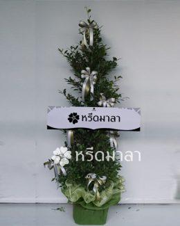 พวงหรีดต้นไม้จากร้าน WreathMala